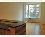 BRAND NEW CONSTRUCTION! 5th AVENUE 1 BEDROOM RENTAL!